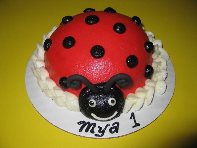 Mya's Ladybug Smash Cake