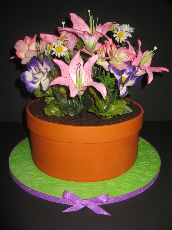 The House of Cakes & Flower Pot Cake